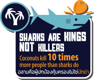 Sharks are Kings Not Killers info graphic