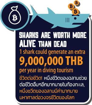 Sharks worth more alive info graphic