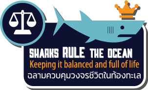 Sharks rule the ocean info graphic